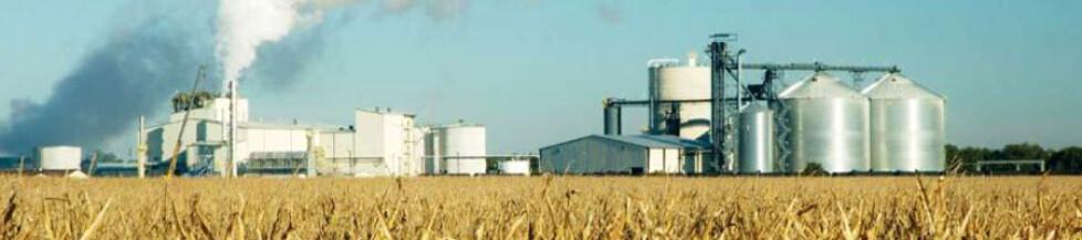 Bio-raffineria
